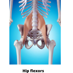 Tight Hip Flexors Wheel Pose